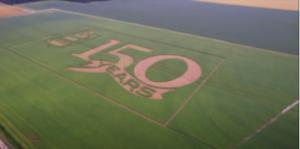 soybean crop maze