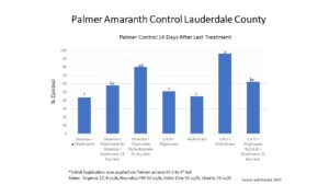 palmer pigweed control in Lauderdale county